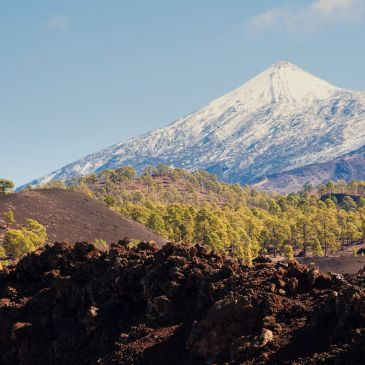 Tenerife Weather and Climate